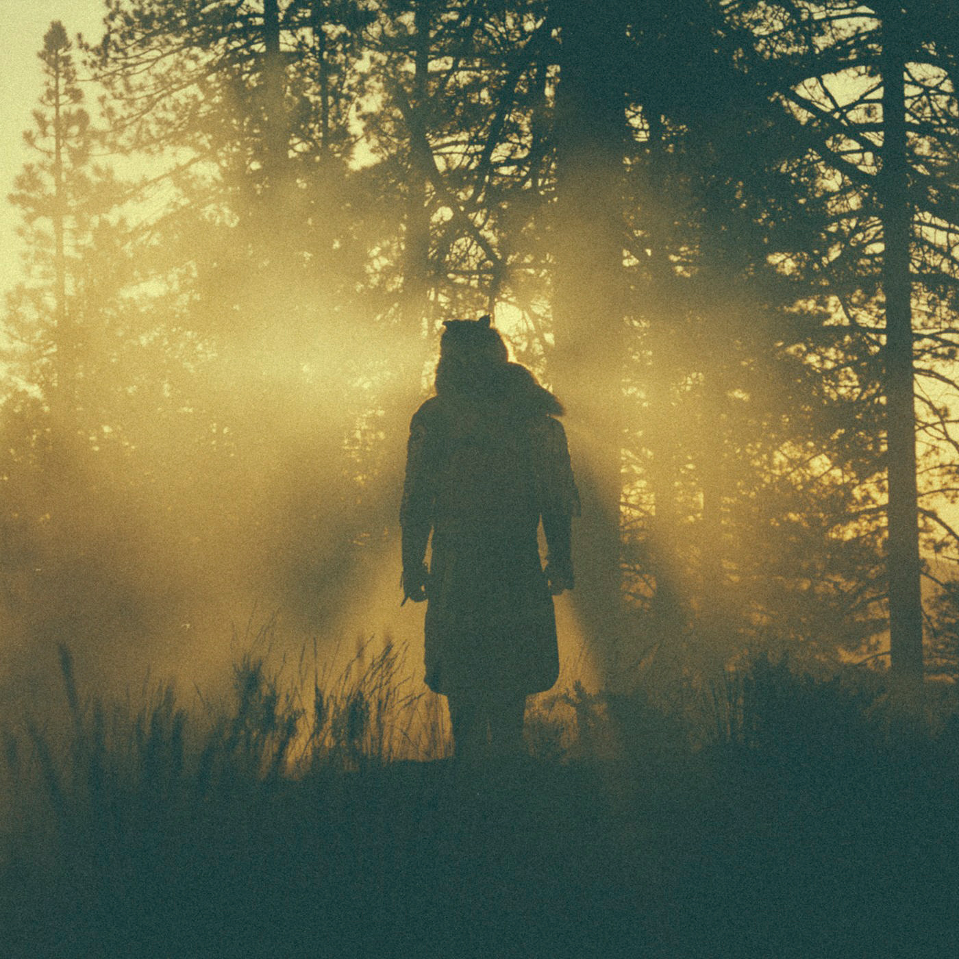 The Beyond/Where Giants Roam  Thundercat  Kevin: Stream It Paul: Pass   Official Site  |  Twitter