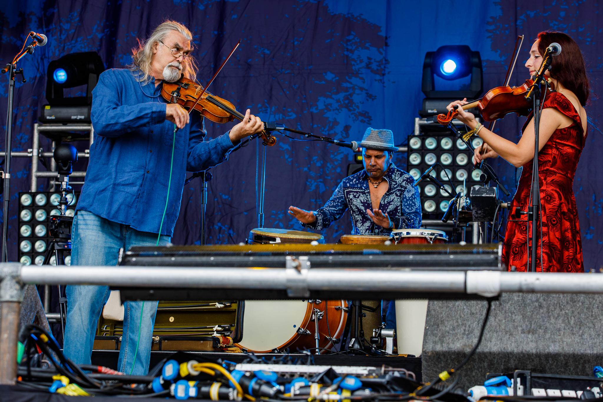 Gigspanner Big Band at Fairport's Cropredy Convention (photo by Matt Condon / @arcane93)