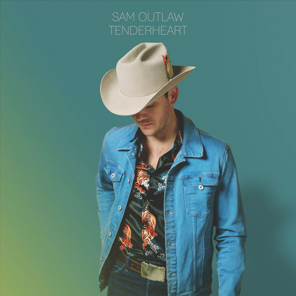 """Tenderheart  -Sam Outlaw  Country music continued to evolve in 2017, but the best work didn't come from Nashville, it came from LA. Sam Outlaw's  Tenderheart packs so many tiny emotional gems into its thirteen songs it's nearly impossible to nail each one down. But there are very few musical highlights of the year like the sugar shot/chaser of """"Bottomless Mimosas"""" - the best Country song of the year by a mile (sorry Midland!) - and the tender memory fog of """"Bougainvillea, I Think."""" Forget the """"guilty"""" this album is pure pleasure. You've earned it. Dig in."""