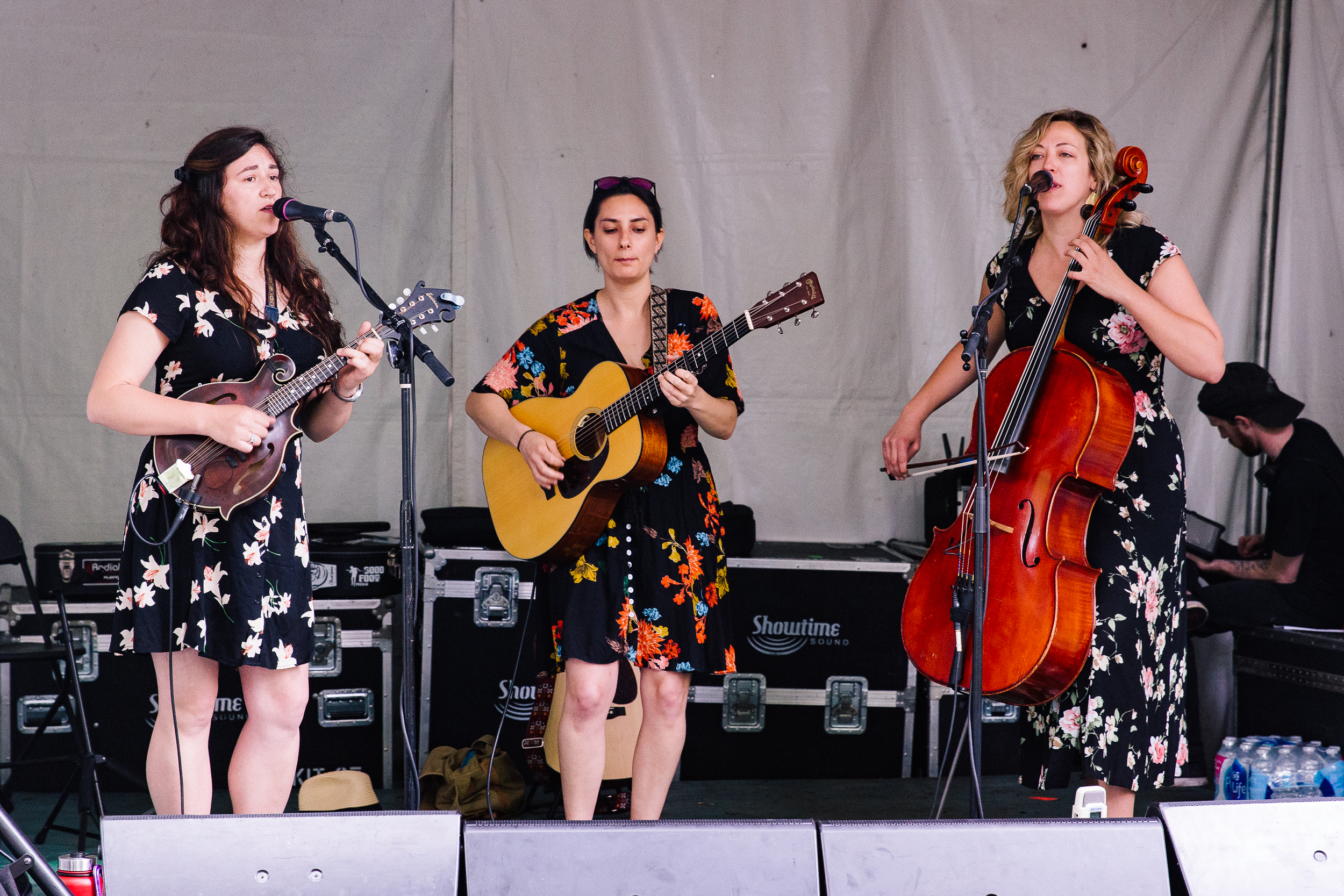 Wicked Sycamore at Kingman Island Bluegrass & Folk Festival (Photo by Mauricio Castro)