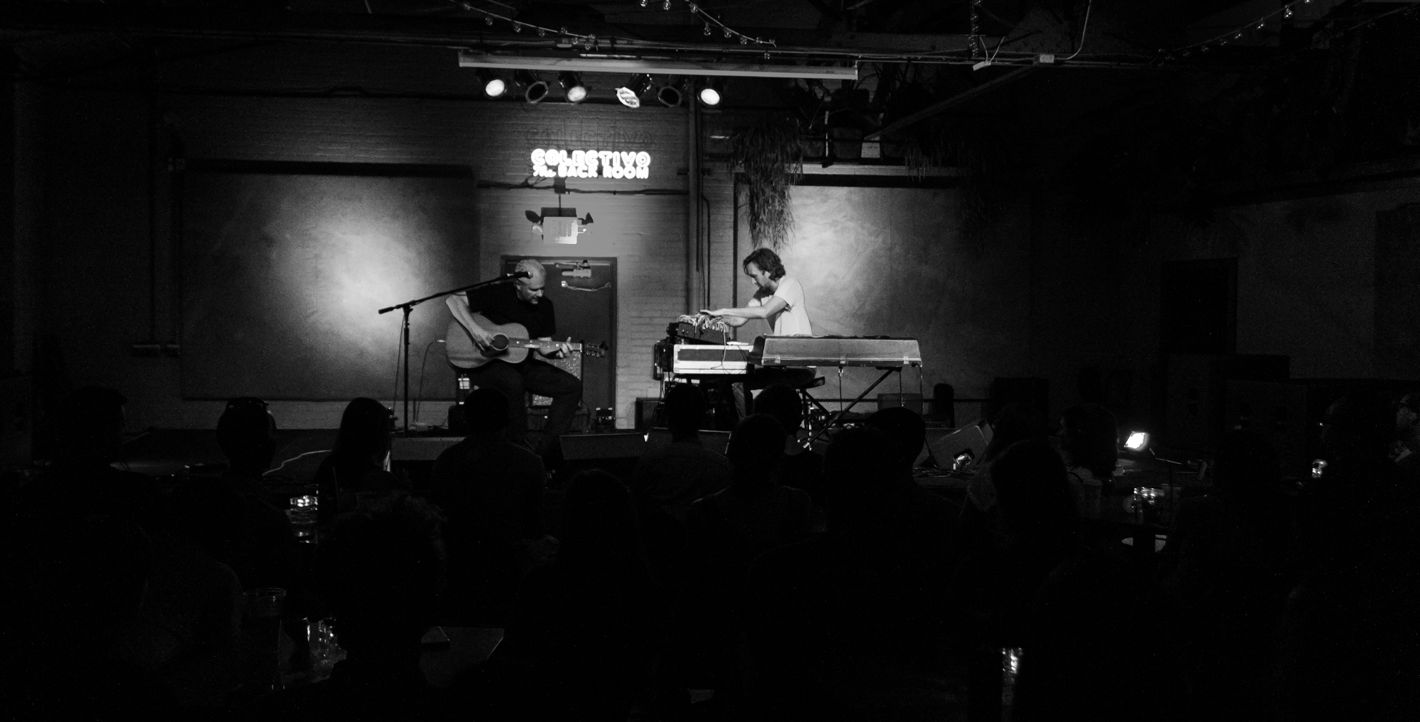 "Rosenau & Sanborn performing ""Bluebird"" at Colectivo Back Room in Milwaukee, WI - 8/9/19 (Photo by Kevin Hill)"