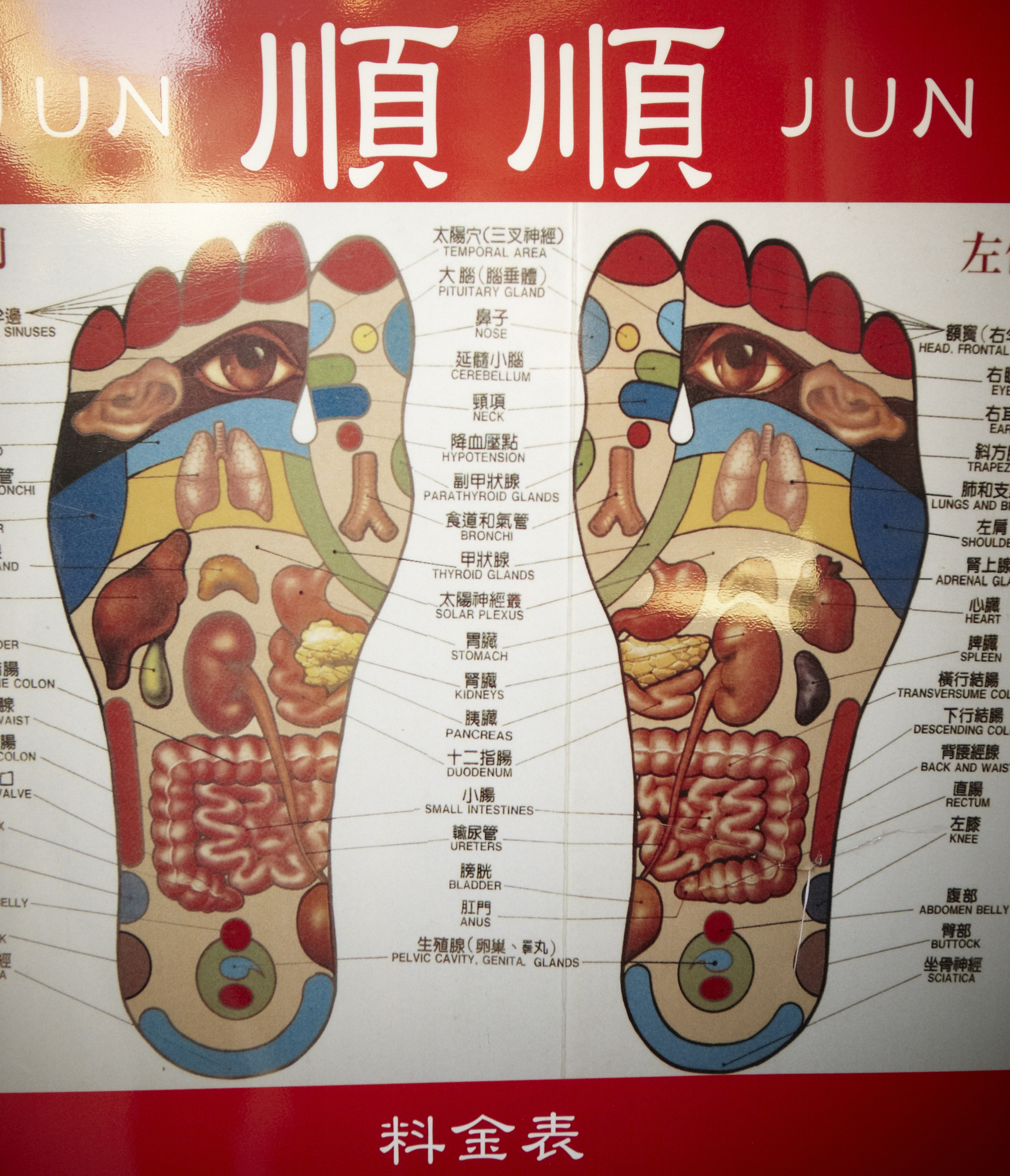 Poster: Why proper footwear is important to your pancreas