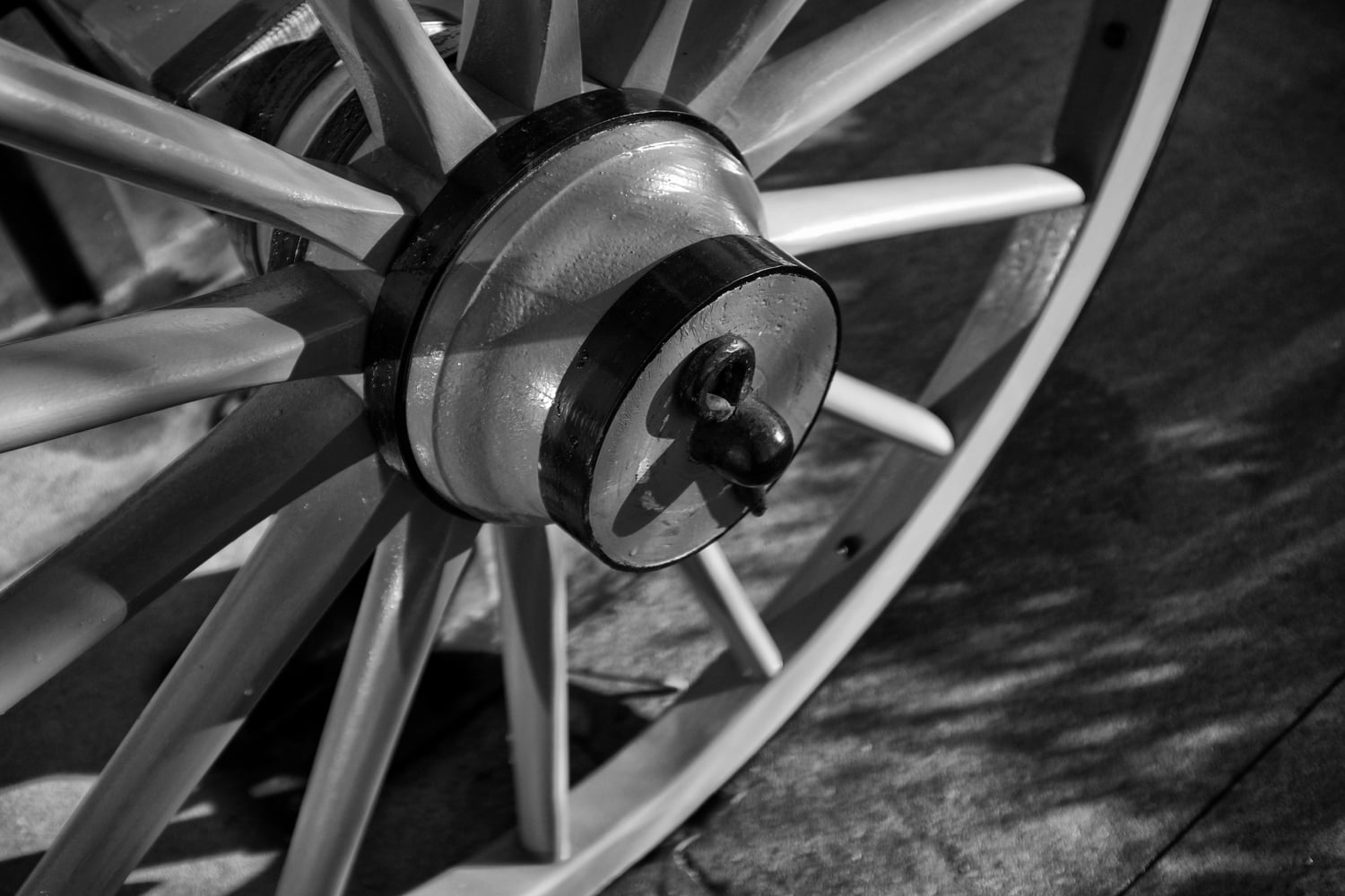 Cannon Wheel - New Westminster
