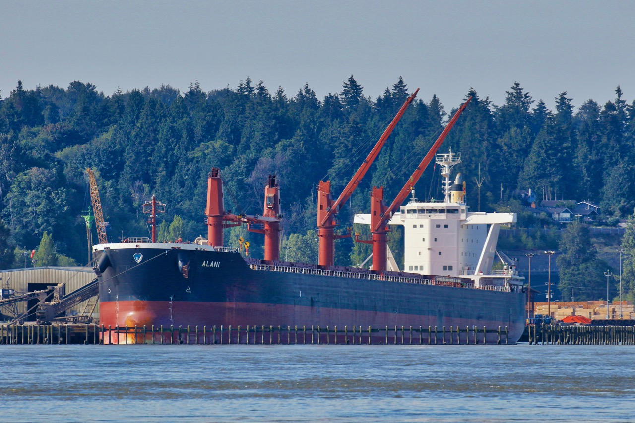 """Bulk carrier """"ALANI"""" at Fraser Surrey Docks in the Port of Vancouver.  Built in 2017, this ship is registered in Malta and operated by Empros Lines Shipping Co. Sp. SA in Greece.  The ship is 200 metres long and 32.2 metres wide. She has deadweight tonnage of 63,427."""