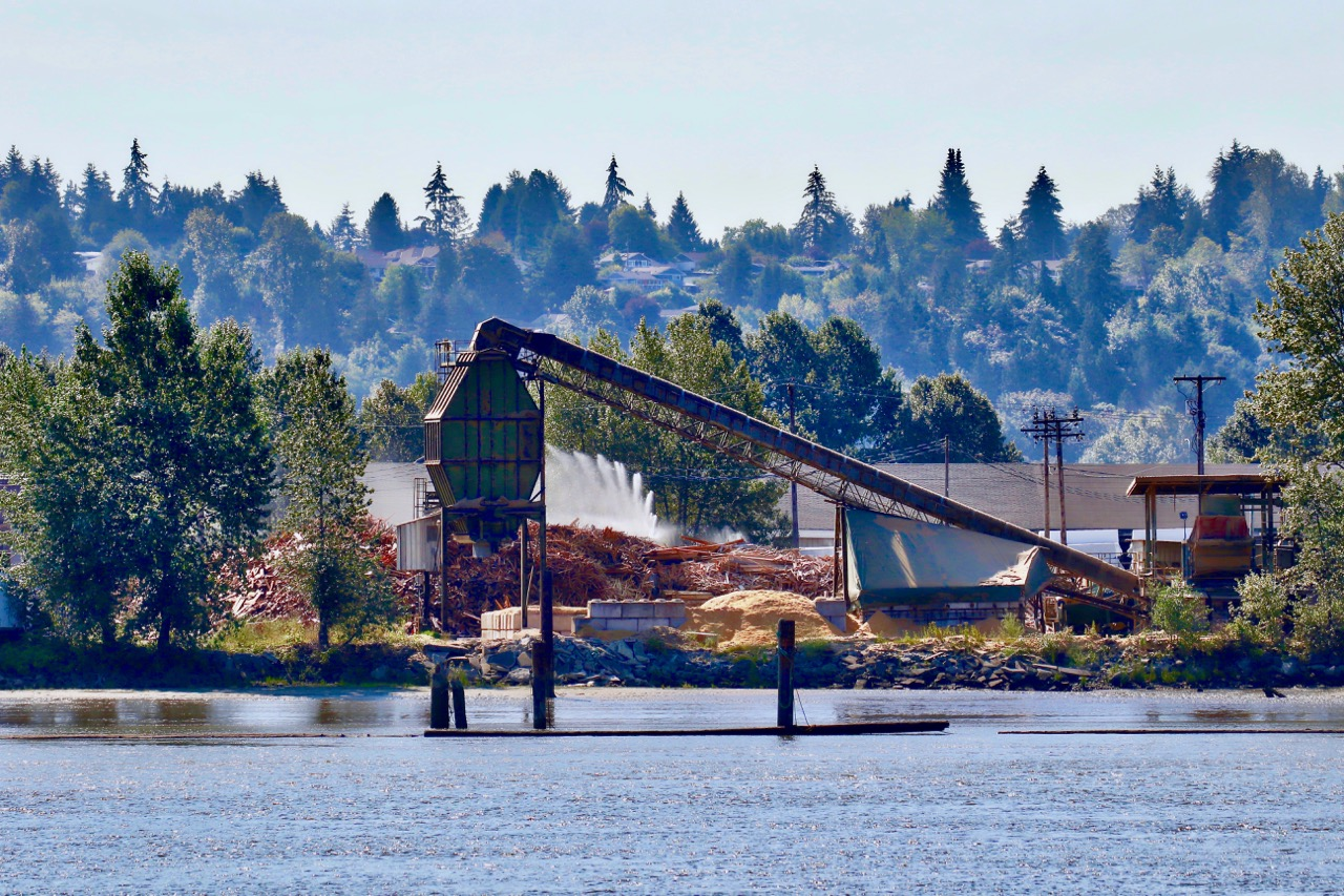 Sawmill at Fraser River, Surrey, B.C.