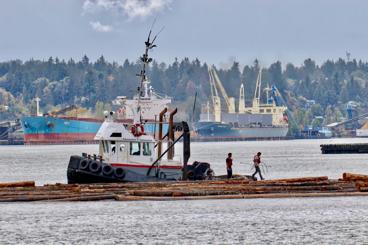"""Crew of Quadrant Towing tugboat """"QUADRANT COMMANDER"""" work with log boom in Fraser River"""