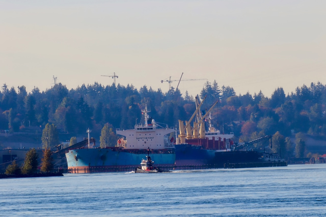 "Tugboat ""SEASPAN TEMPEST and freighters ""NILHOS"" and ""KEY WEST"" in Fraser River"