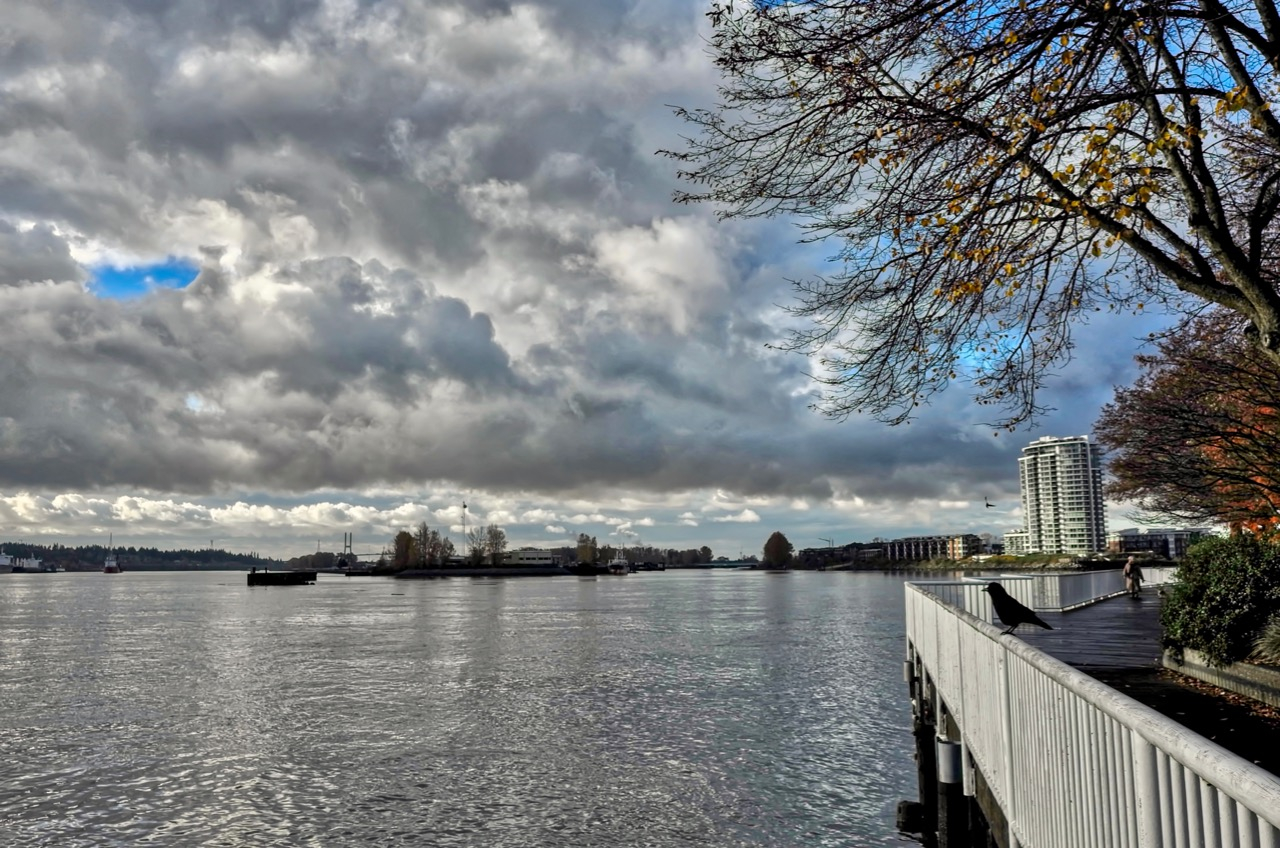 The Fraser River at New Westminster Quay