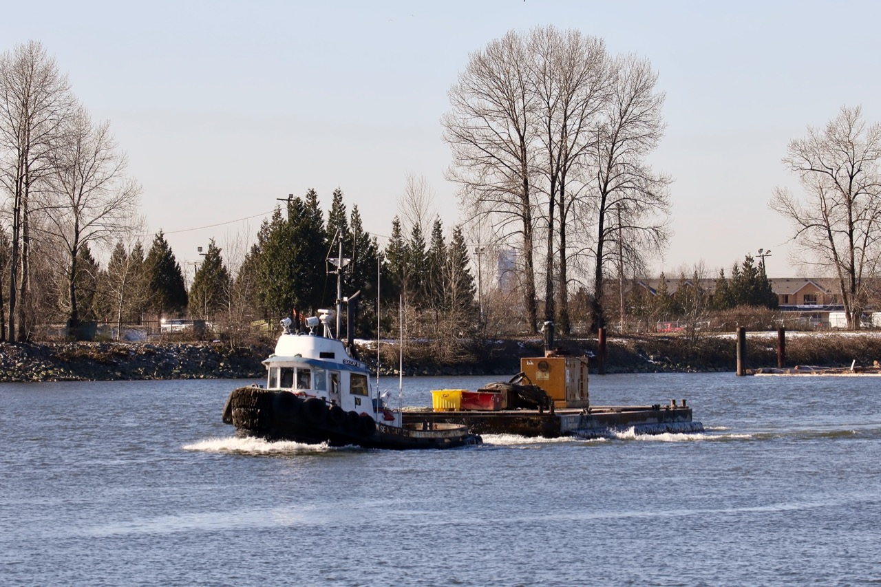"""Valley Towing Ltd. tugboat """"SEA CAP III"""" in Fraser River"""