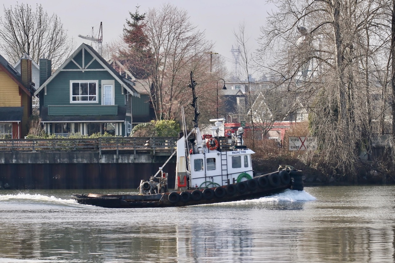 """Catherwood Towing tugboat """"PACIFIC TYEE"""" in Fraser River"""