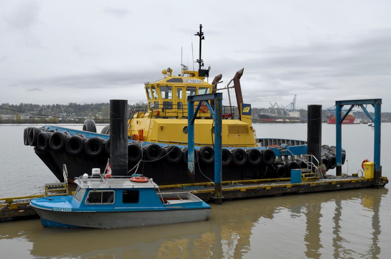 """SAAM SMIT Towage Canada tugboat """"SST TIGER SUN"""" in Fraser River"""