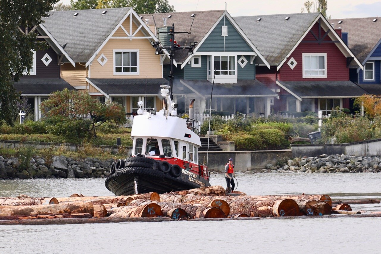 "Harken Towing Co. Ltd. tugboat ""DOROTHY MACKENZIE"" guides log boom in Fraser River"
