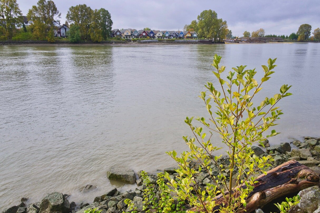 Fraser River, New Westminster B.C.