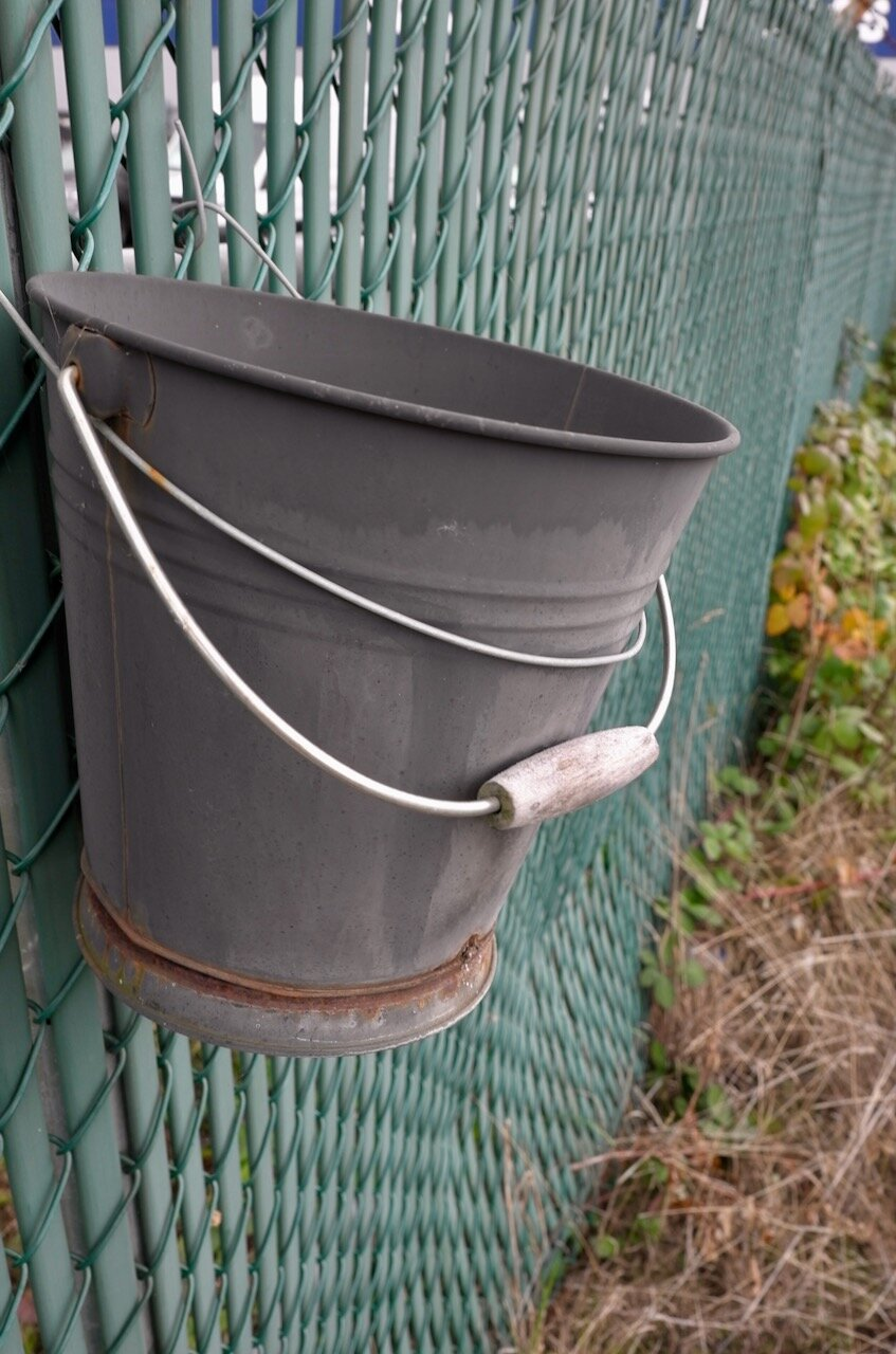 Old bucket on fence, New Westminster B.C.