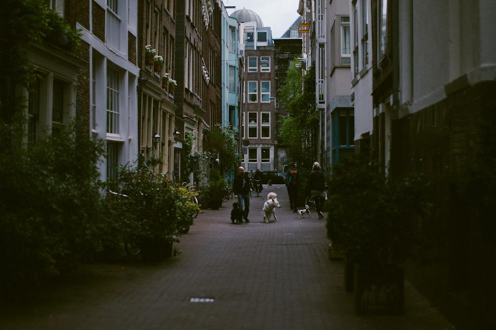 amsterdam_alecvanderboom (3 of 22).jpg