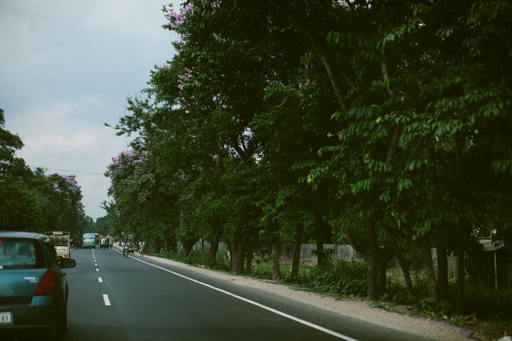 darjeeling_india_alecvanderboom (3 of 25).jpg