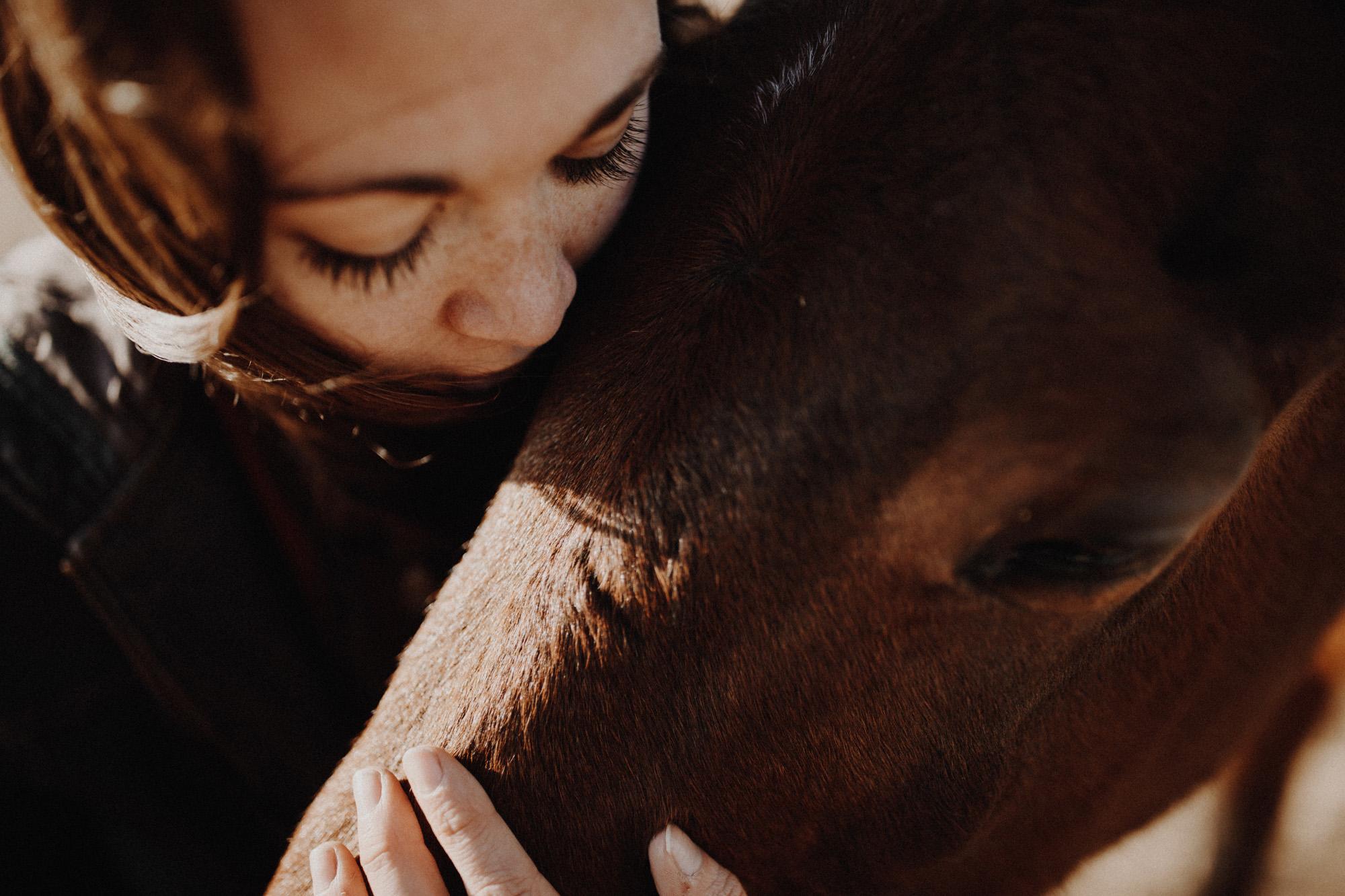 alec_vanderboom_horses_online-0006.jpg