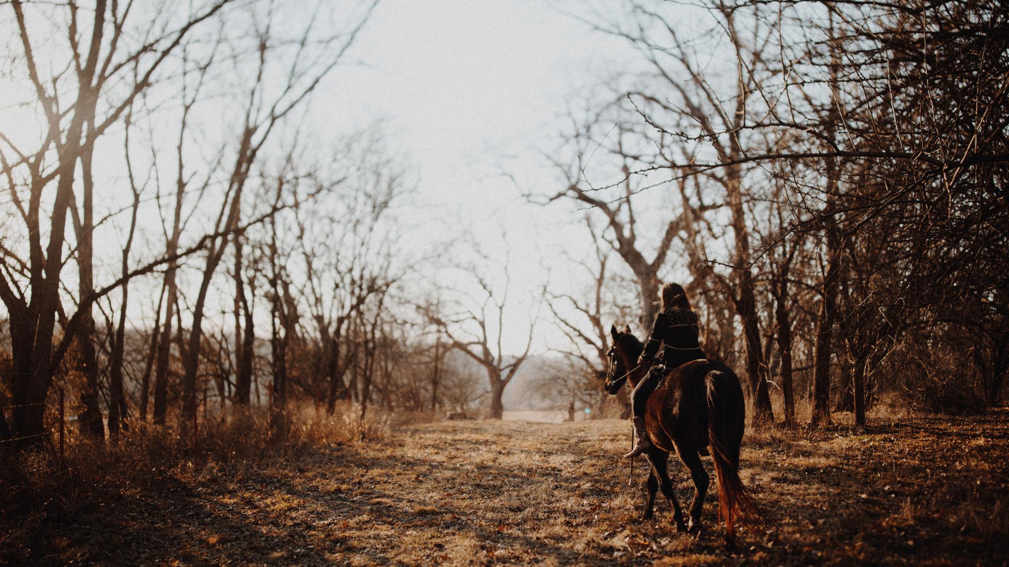 alec_vanderboom_horses_online-0012.jpg