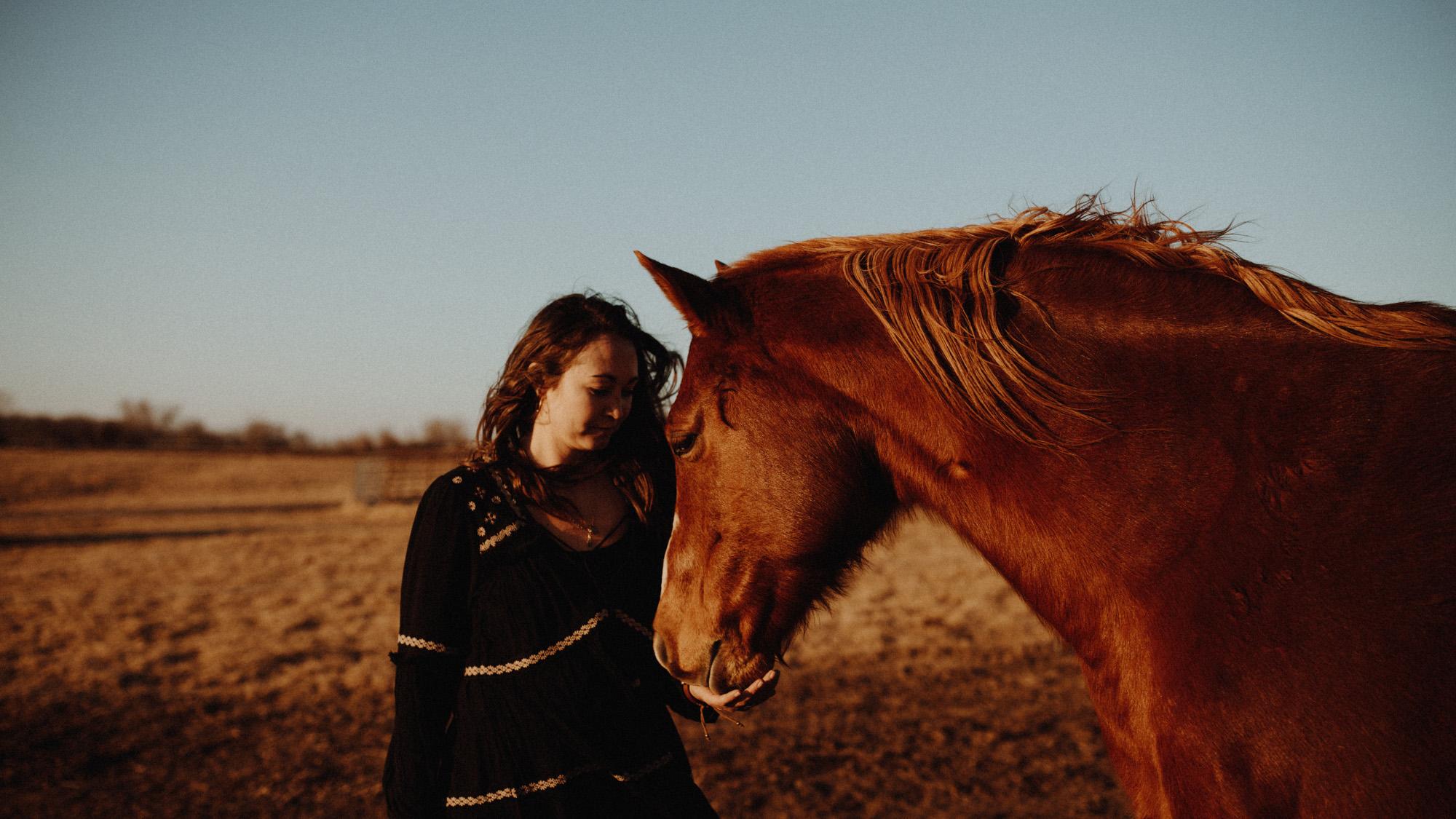 alec_vanderboom_horses_online-0023.jpg