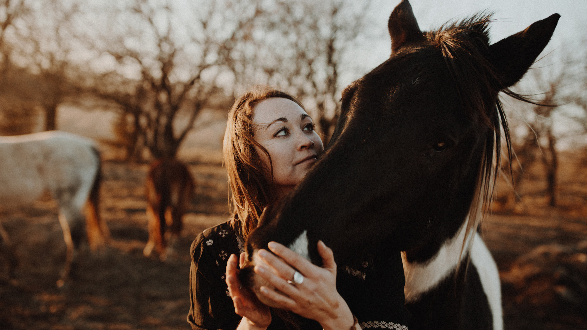 alec_vanderboom_horses_online-0027.jpg