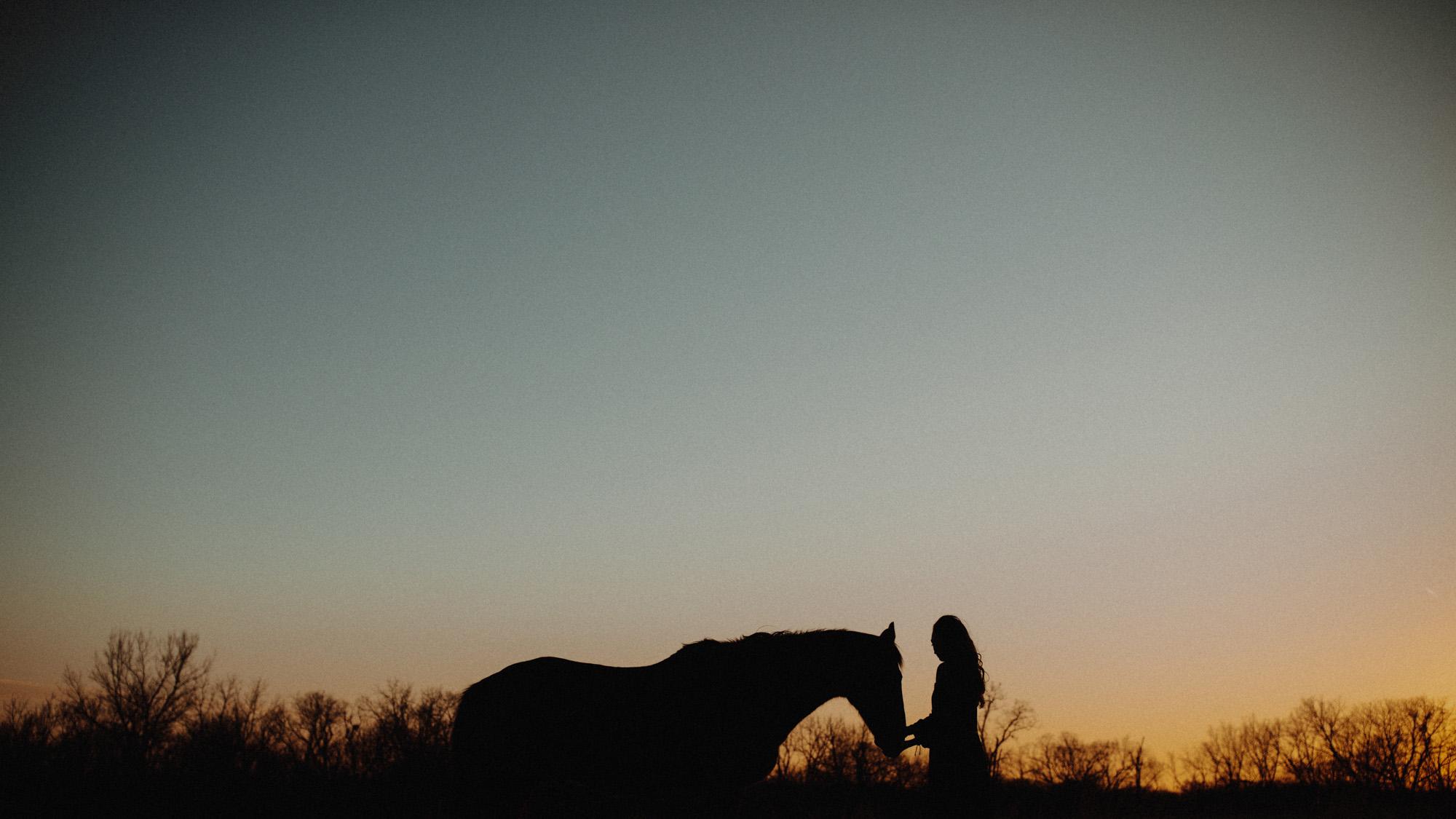 alec_vanderboom_horses_online-0035.jpg