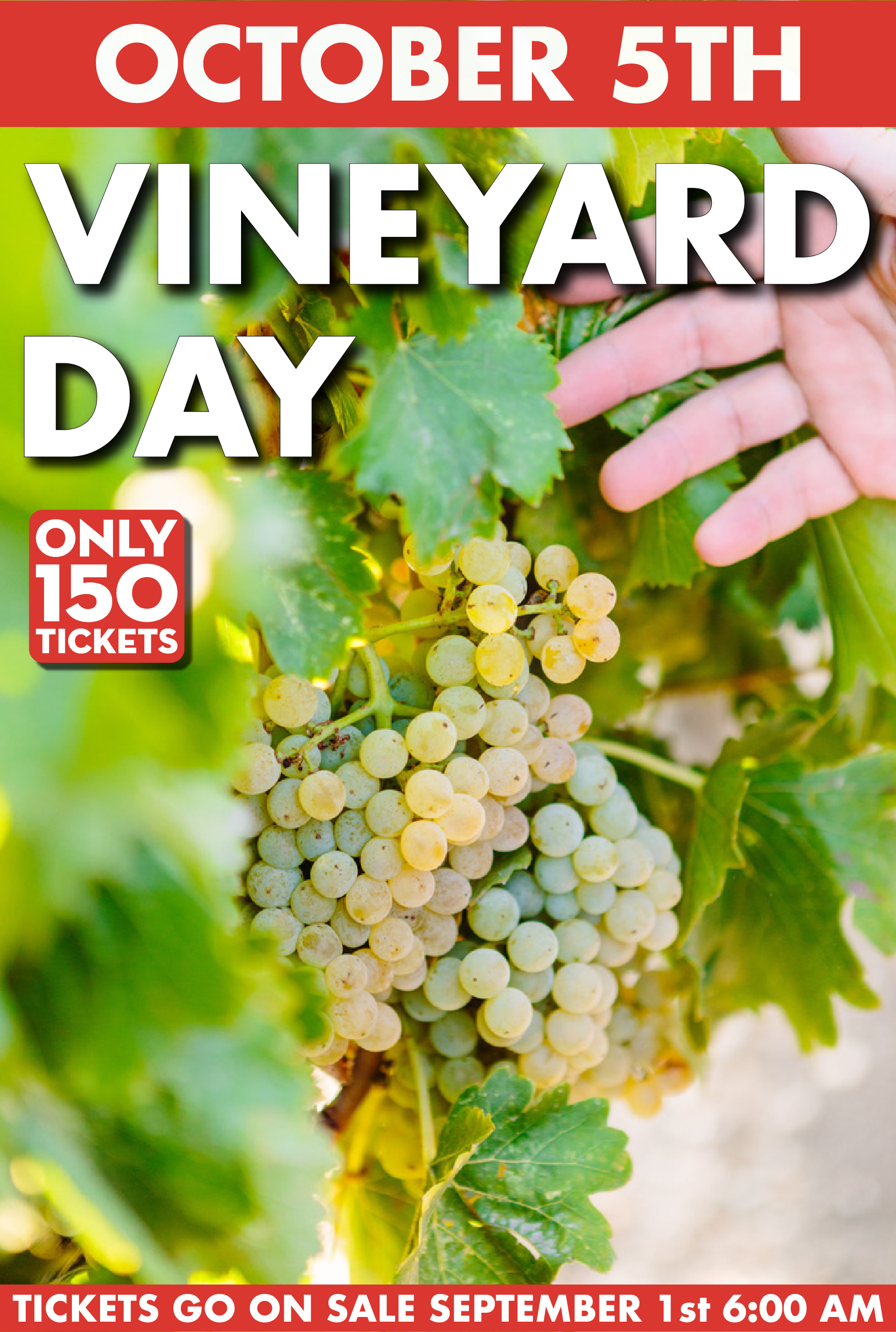 Vineyard Day bumpers-05.png