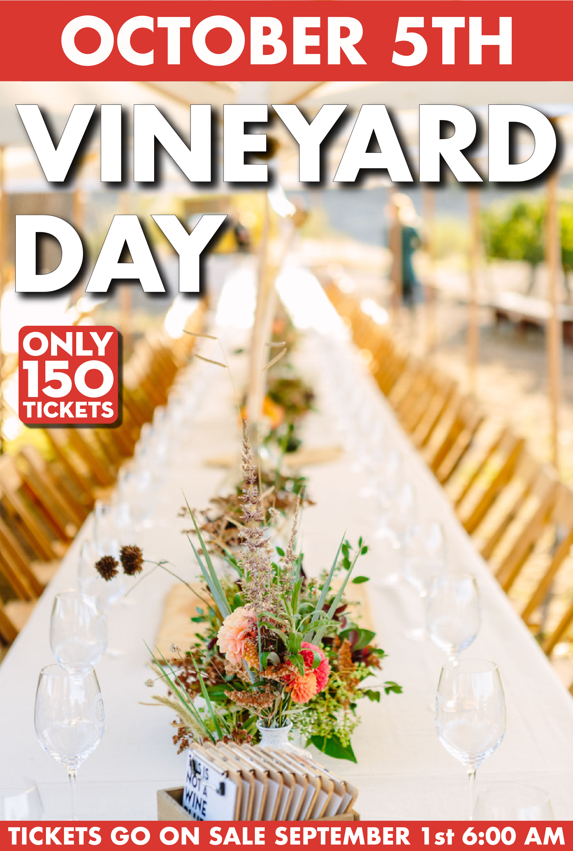 Vineyard Day bumpers-10.png
