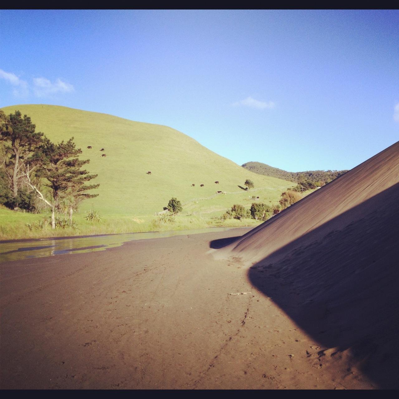 Lush farmland vs. sand dunes