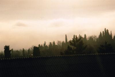 5.Stables, Vallebona.jpg