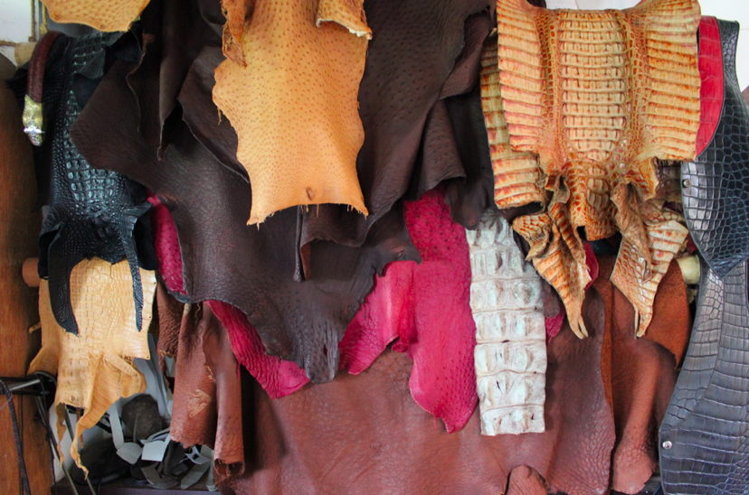 Dyed ostrich skins used for crafting belts, bags, vests, and more