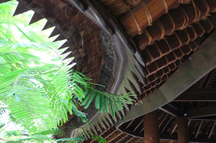 Interior roof detail