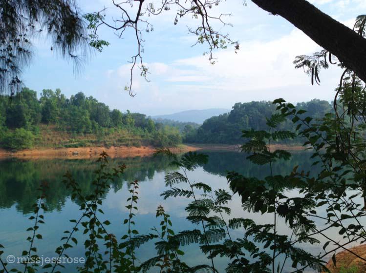 View of Neyyar Dam across from the Hindu yoga ashram