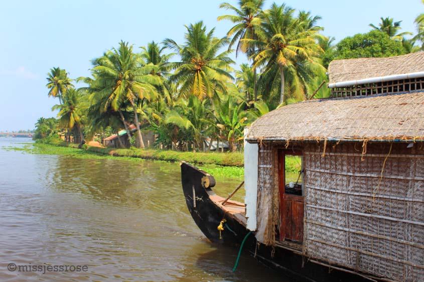 Noah's Ark or Indian houseboat?