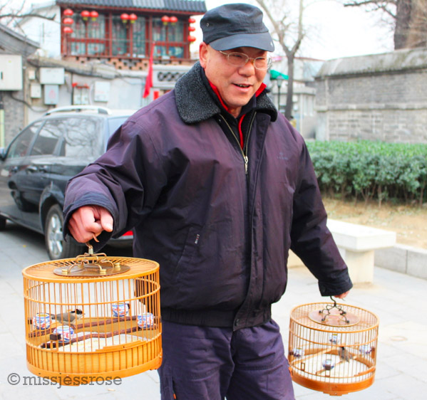 Taking his birds for a walk