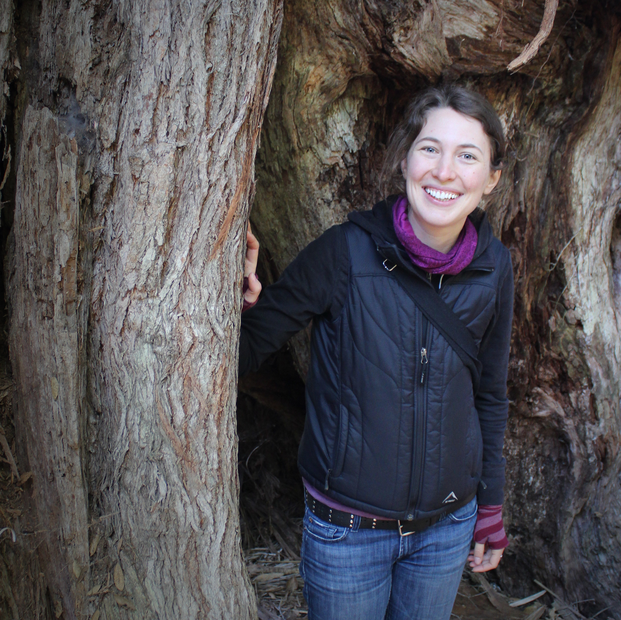 Exploring a great Rata tree in New Zealand