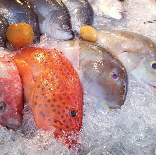Fresh catch, Krabi, Thailand