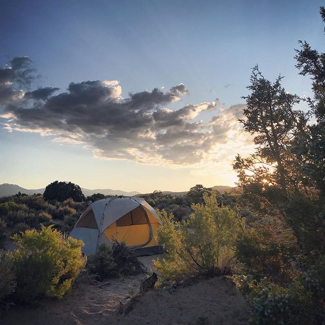 Throwback to golden hour at our campsite last weekend in the Eastern Sierras. More adventures like this please.