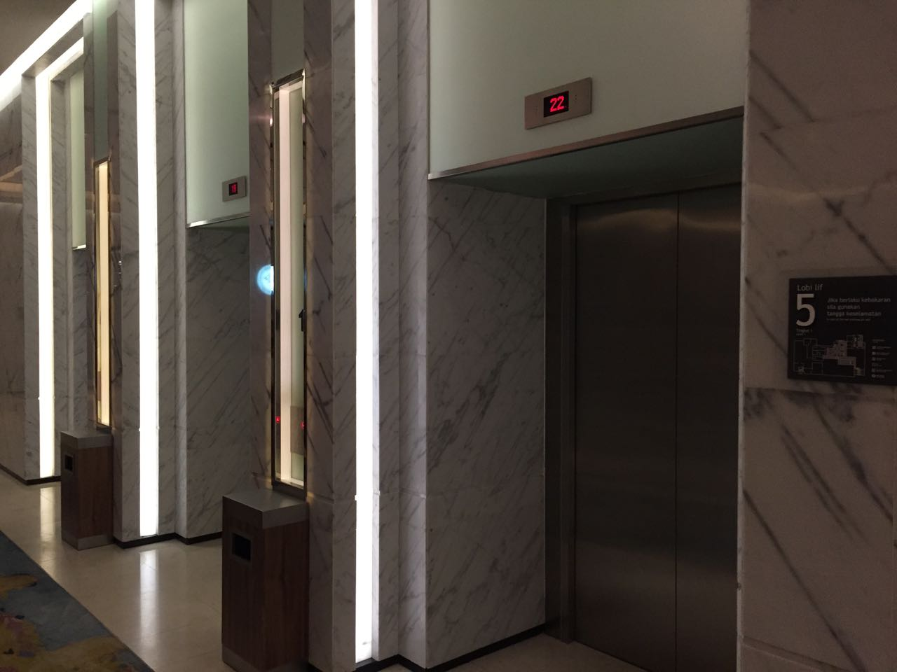 No hall signal and I can't see the other elevator doors.