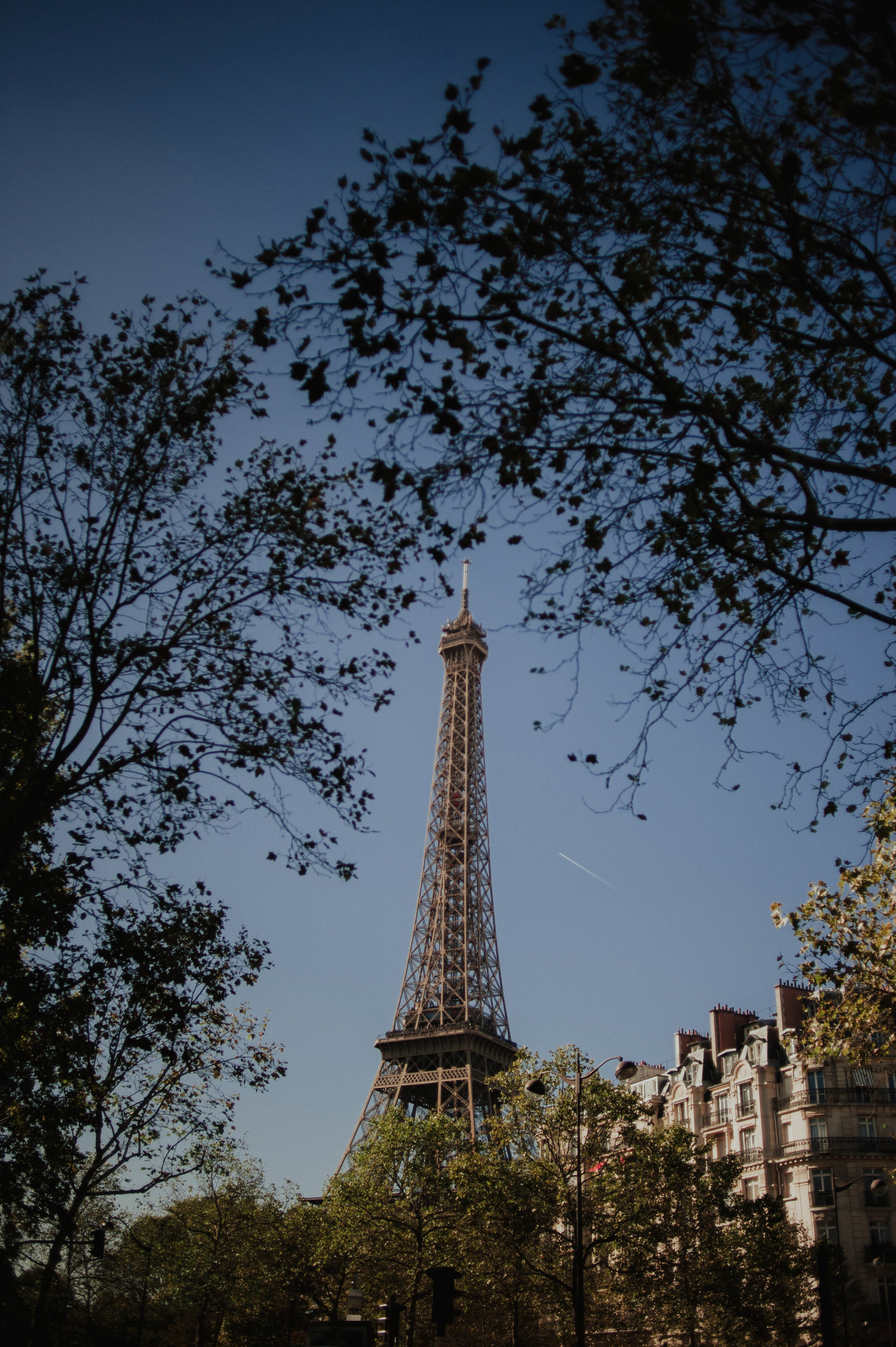 Rachel + Sam In Paris-26.jpg