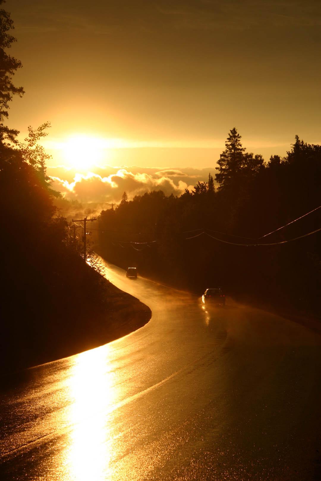 Sunset on the camp road -  photographer Travis Allison