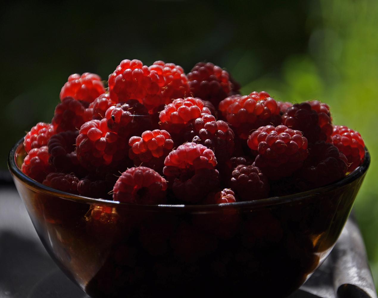 Fresh fruit is a staple on our 3 Week Summer Camp Menu