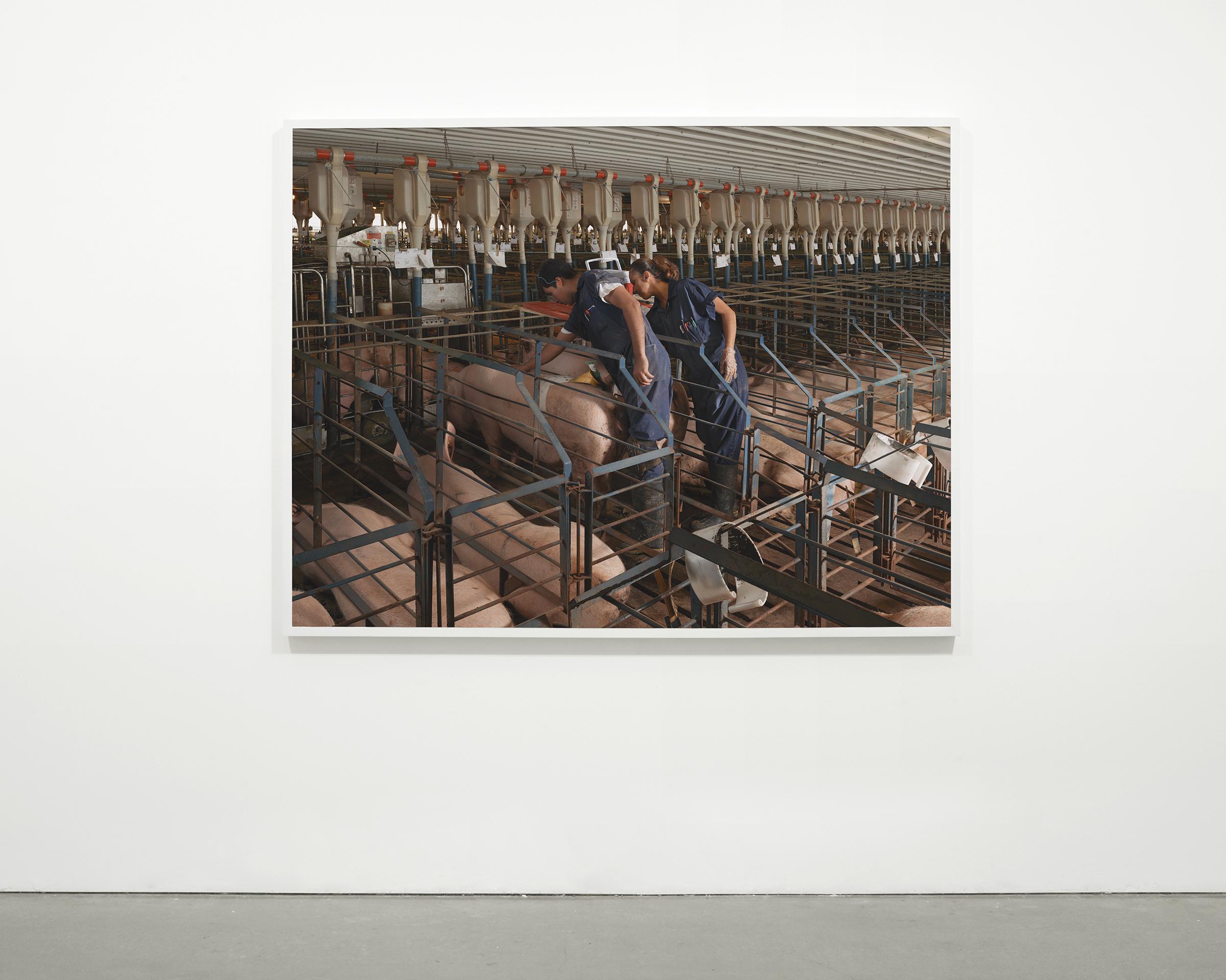 """""""A.I."""", 2013 - 2015  54 x 71 in (137.15 x 180.35 cm)"""