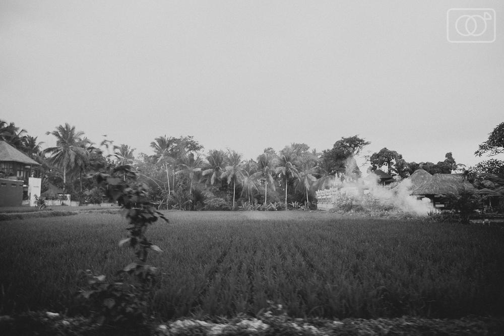 balitravelubudphotographyvacationindonesiakutavolcanoscooterrental-43.jpg