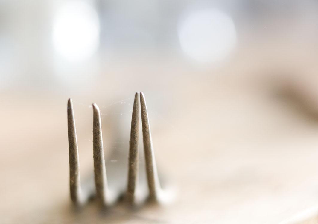 silverfork.jpg