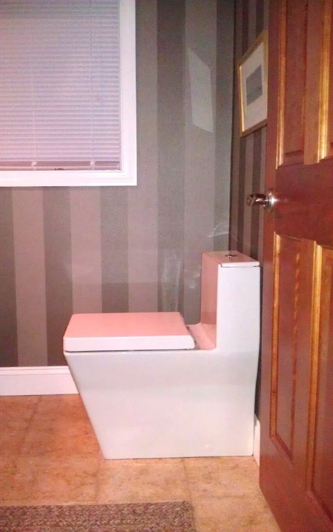 Powder Room - New Toilet.jpg