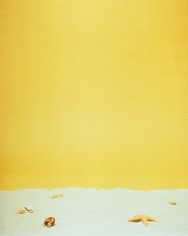 "Covers: Beach (1997) (20""x24"") color photograph"