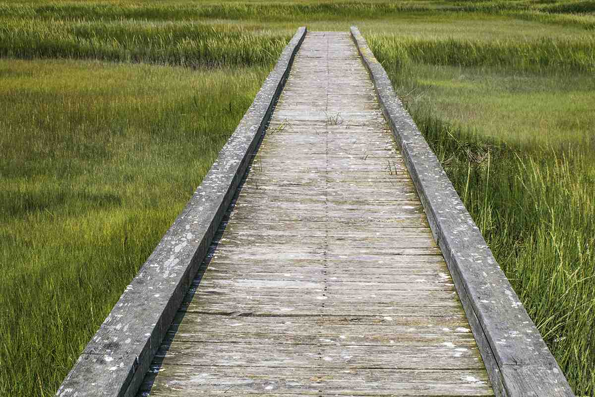 Board Walk to Nowhere