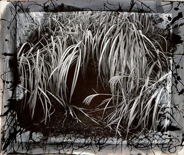 """Untitled"" by Robert Asman, silver gelatin print"