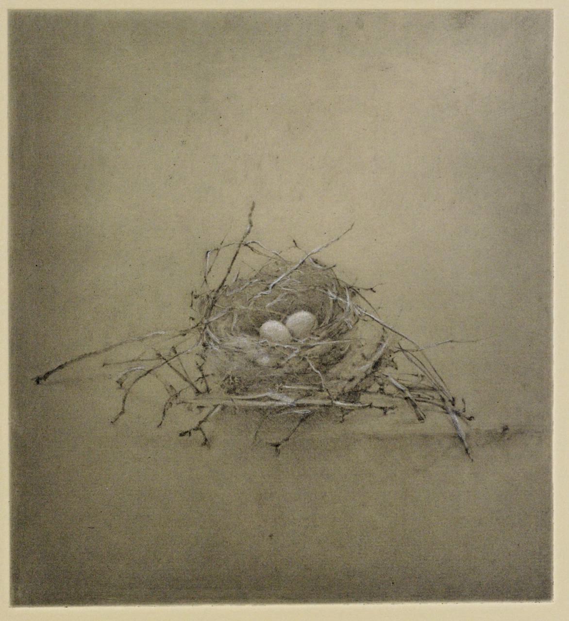 Nest #1
