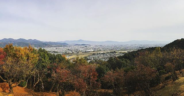 Fall colors of Kyoto 🍁